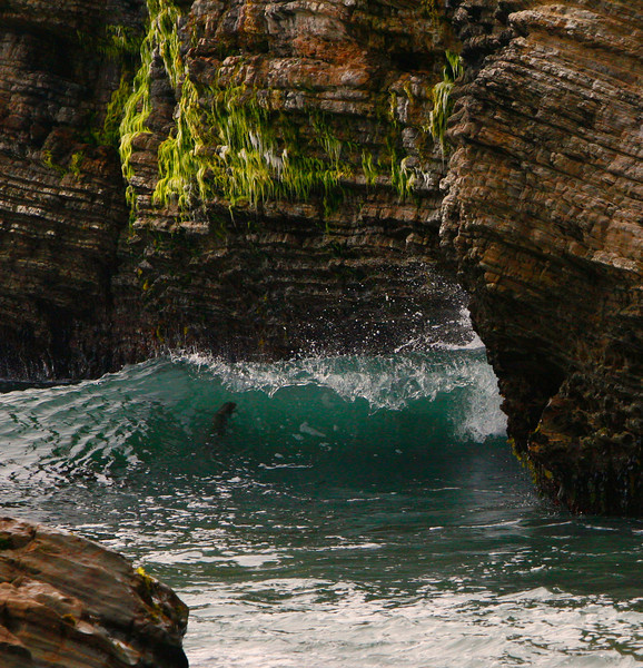 Grotto wave