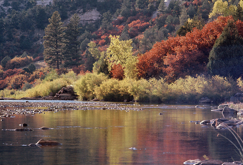North Anthracite Ck in October Fall colors