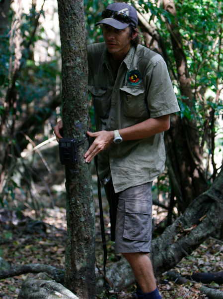Ranger sets a camera trap on a trail he hopes will be used by the tree kangaroo