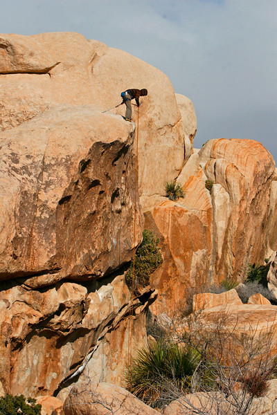 Two climbers from Calgary showed up and did some of the climbs in joshua tree national park.