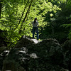Patapsco State Park, Grist Mill Trail