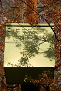 M patterns shadow box