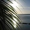 Vue sur le lagon au Fare Vai Moana - Moorea - Polynésie Française