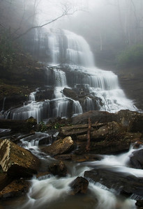 The beautiful Pearson's Falls on a foggy morning.
