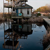Point Pelee Marsh Tower
