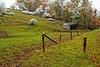 October Storm<br /> Blue Knob Area, Bedford County, Pennsylvania