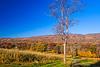 Black Valley Fall Vista
