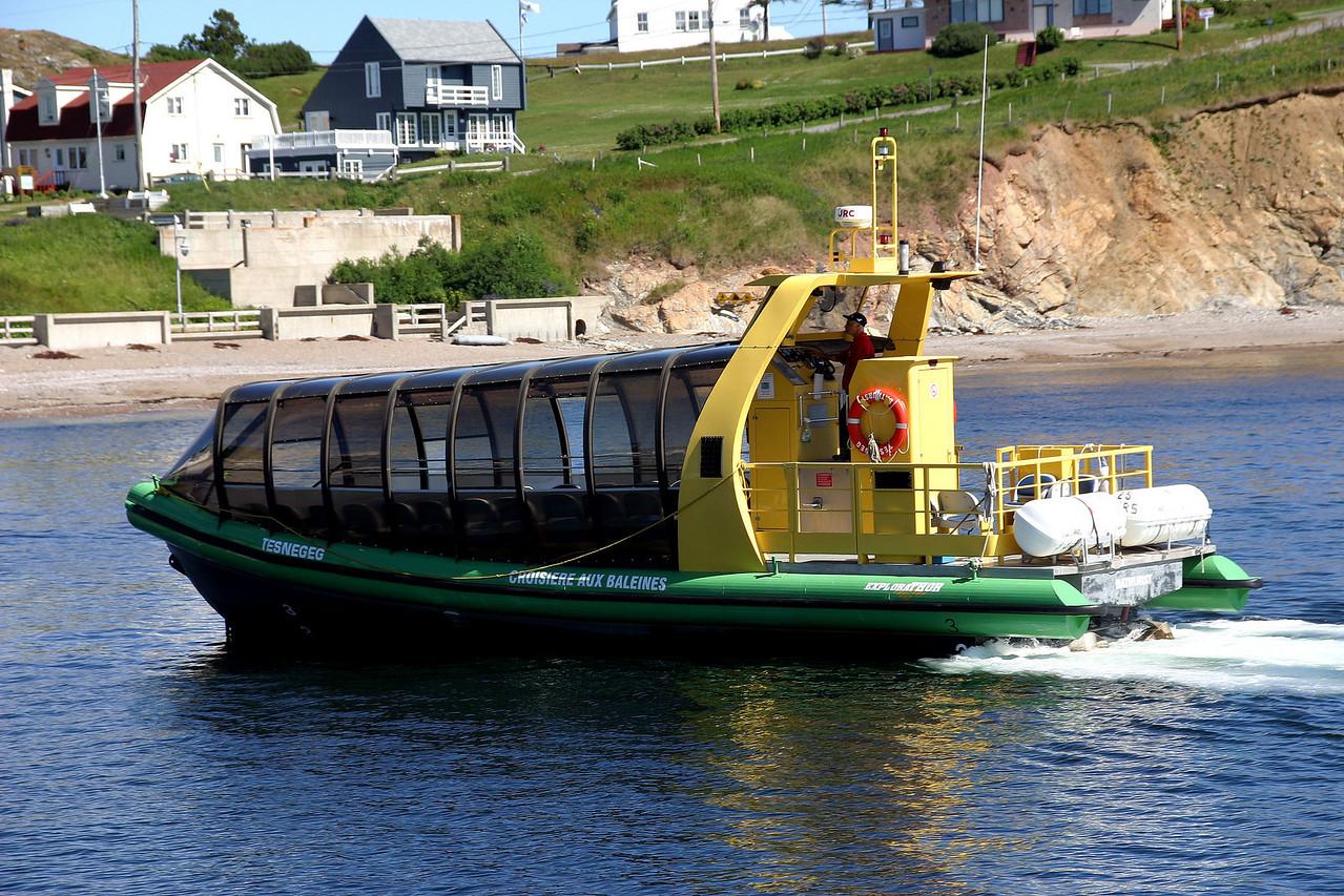 Ready to launch<br /> 我们乘这艘快艇出海看鲸鱼。这艘快艇速度快且安静,每次都能较早地发现鲸鱼,而且可以靠得很近。