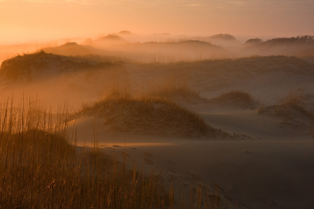 Dune Fog, Back Bay Nat'l Wildlife Refuge, VA