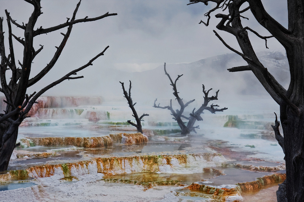 Strange Landscape<br /> Mammoth Hot Springs