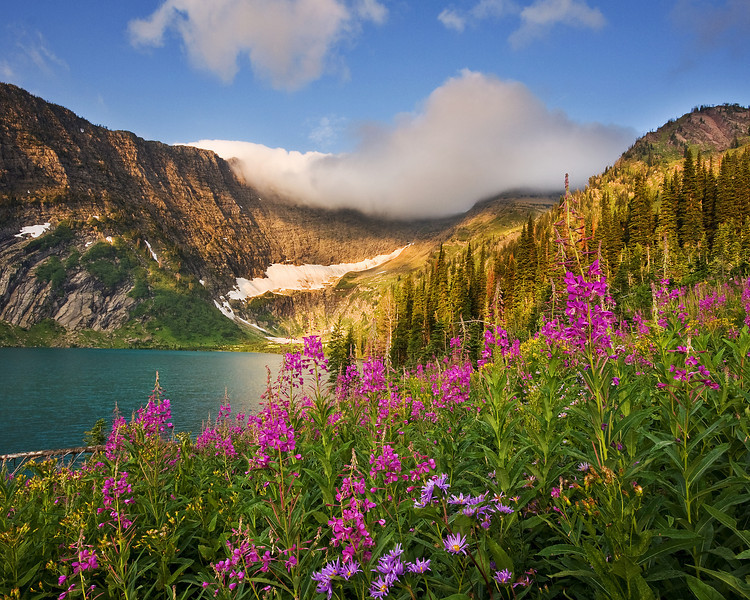 Fireweed and Koessler Lake<br /> Bob Marshall Wilderness, MT.  Published on the cover of Montana Outdoors, July-Aug 2013