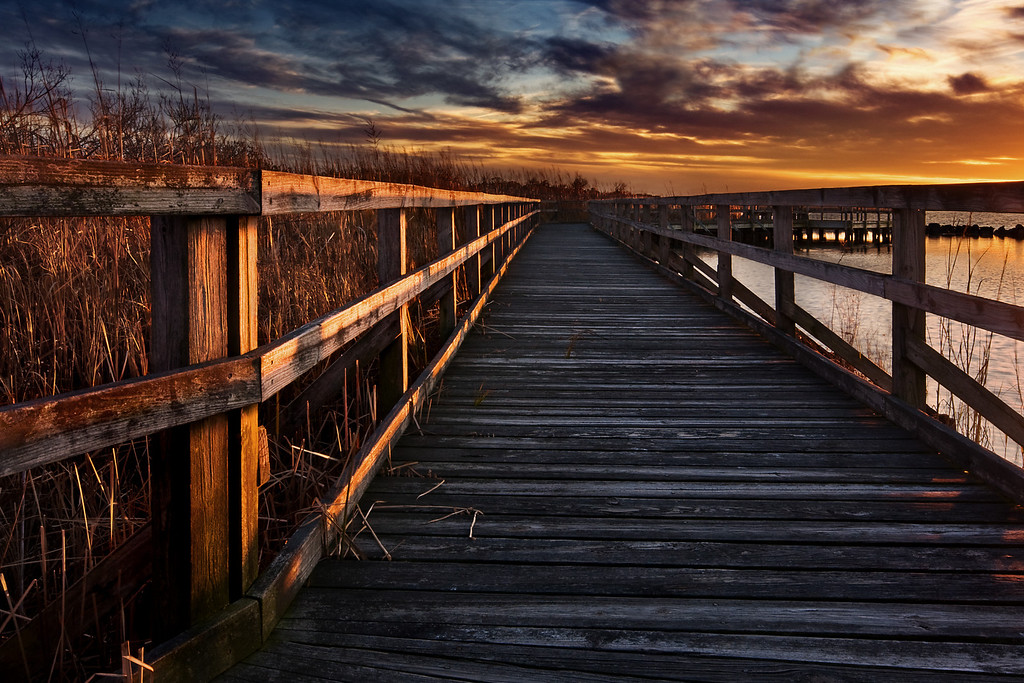 "Boardwalk at Sunset, Back Bay Nat'l Wildlife Refuge, VA<br /> Published in May 2008 issue of Digital Camera Magazine as ""Shot of the Month"".<br /> See the ""East Coast Photos"" gallery for B&W versions."