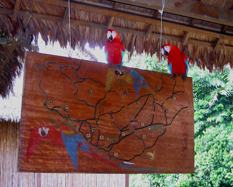 TRC chicos and trail map July 29