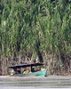Tambopata River banana boat 1