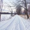 Winter at Petrie Island