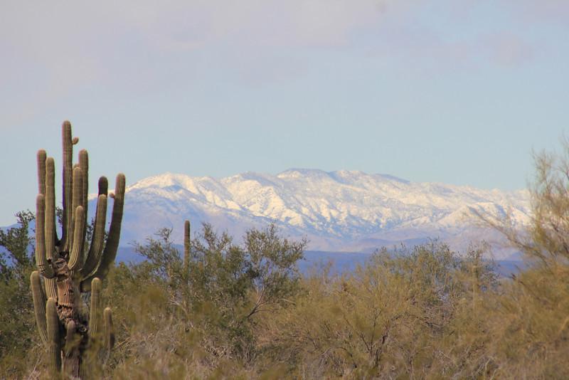 12-30-10 Snow Mtns Phx 5