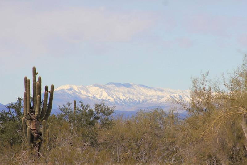 12-30-10 Snow Mtns Phx 6