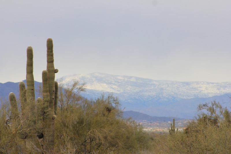 12-30-10 Snow Mtns Phx 3