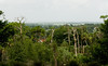 Bok Tower Gardens - The view from the Exeda and Sunset Overlook.  This point is 298 feet above sea level.