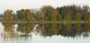 Viera Wetlands Landscape