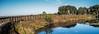 • Paynes Prairie Preserve State Park Lau Chau Trail Boardwalk<br /> • Scenic view