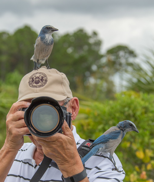Location -  Cruickshank Sanctuary in Rockledge, FL