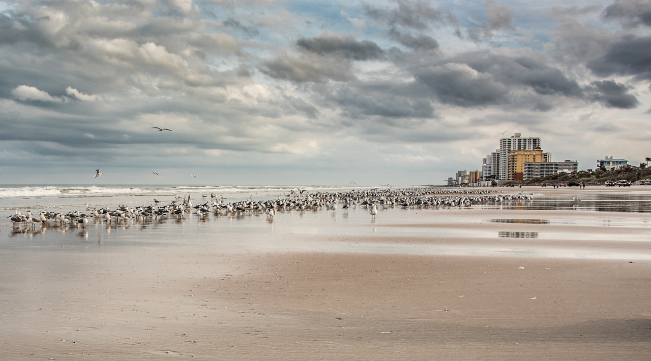 Location - Daytona Beach