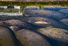 Location - Desoto Parkway in Satellite Beach