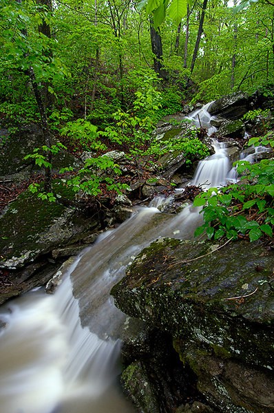 After a big rain, all the waterfalls in the woods come alive.