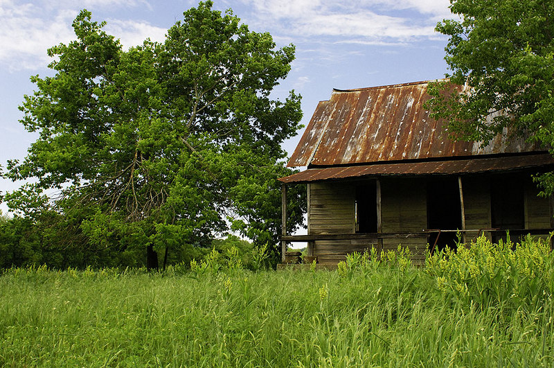 The ozarks are littered with old homestead sites.  This is one such site.