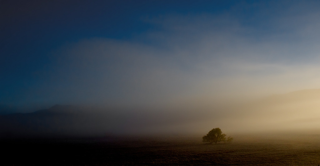 Dawn at Lake Henshaw