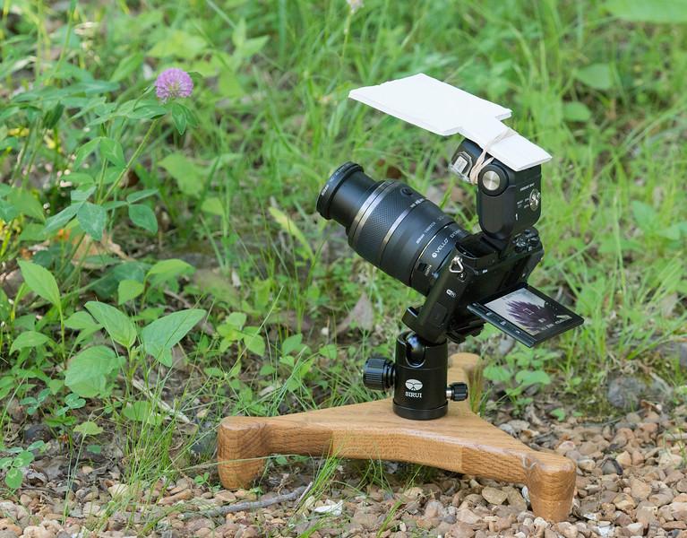 Nikon 1 V3, Nikon 1 30-110 mm lens plus Vello 16 mm extension tube and Nikon SB-N7  flash mounted on homemade wooden ground pod.