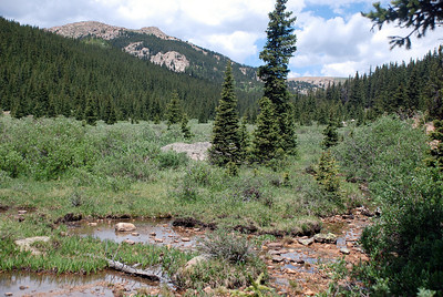 Wetlands on Pikes Peak South Slope