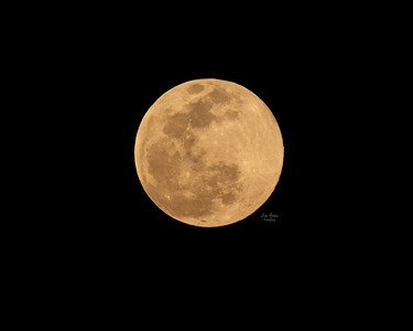 Super Pink Full Moon Supermoon