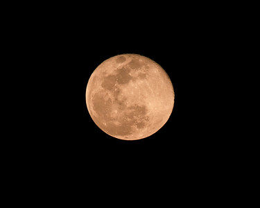 Super Pink Full Moon Supermoon  | Florida Nature, Landscape Photographer, Home Decor Prints  | Fine Art Photography Prints Wall Art