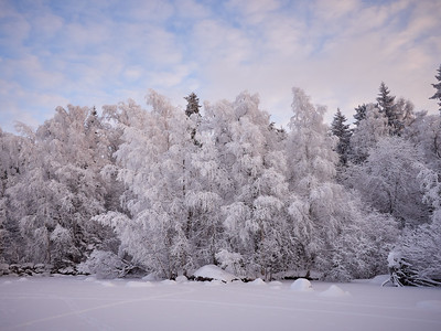 Winterscene 6