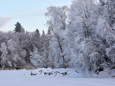 Winterscene 10