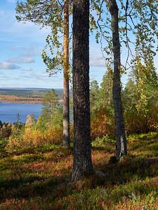 So far as you can see. Saukkovaara views