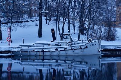 Lokki in winter