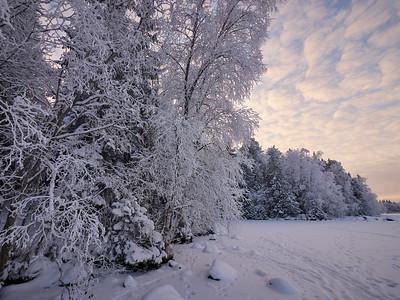 Winterscene 8