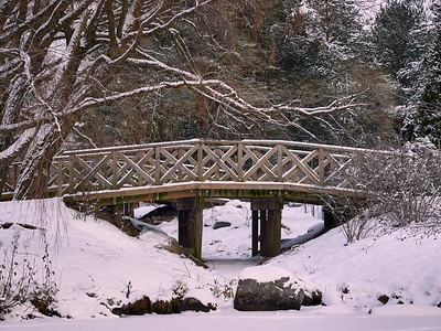 The Wooden Bridge