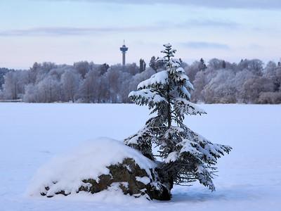 Winterscene 12