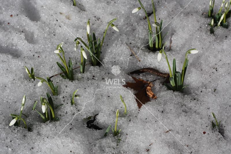 Spring Break by kgoetzinger