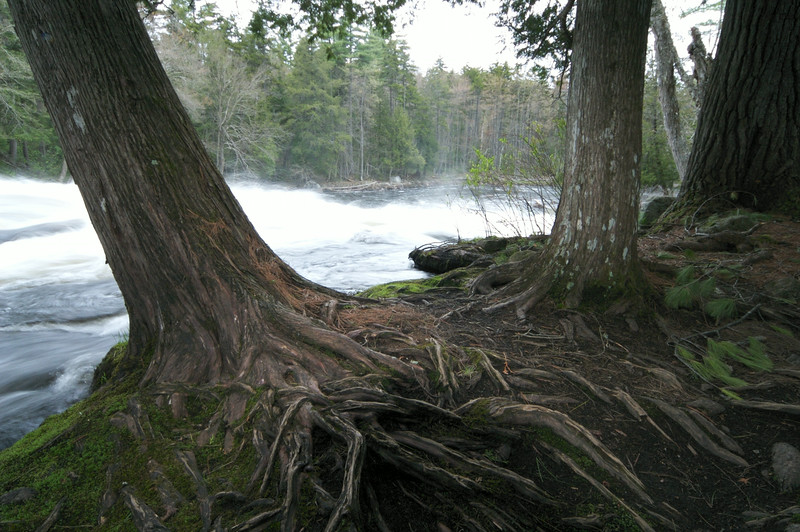 Adirondack State Park, New York.