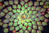 DSC_9404 Mosaic Plant CU V2