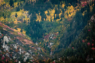 fall colors by bell's canyon: snow above 9,000' tonight