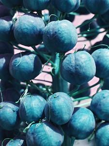CO 2011 06 DBG 4 color