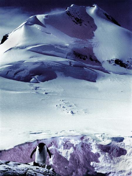 Antarctica 0