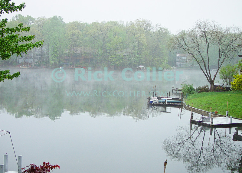 Lake Thoreau, Reston, Virgina, USA.  Mist rises of the lake on a cold early spring day.  © Rick Collier<br /> <br /> <br /> <br /> Lake Thoreau Reston Virgina lake reflection serene serenity reflections tree trees mist fog cold