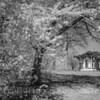 Latrobe Pavilion